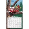 Picture of LANG Wall Calendar 2022 Birdhouses by Tim Coffey